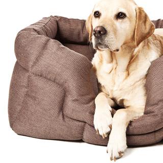 Coussins pour chiens