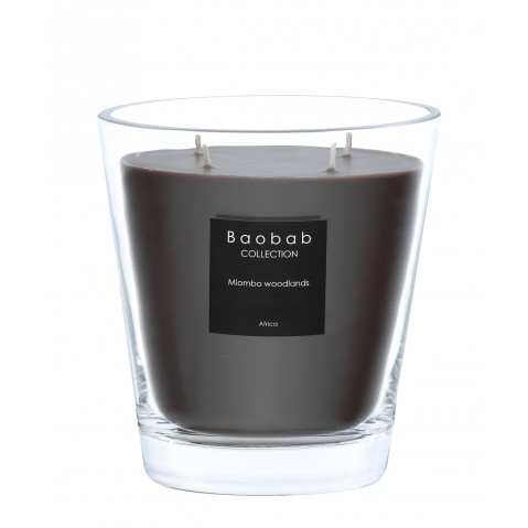 Bougie MAX 16 MIOMBO WOODLANDS de Baobab Collection
