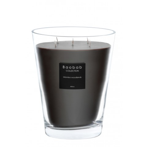 Bougie MAX 24 MIOMBO WOODLANDS de Baobab Collection
